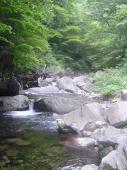 眩しい渓2