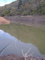 ある湖沼その2