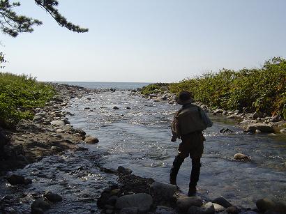 日本海ときょんさん922