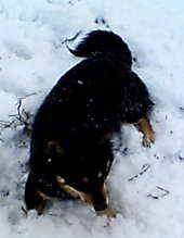 200601223