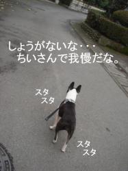 散歩へ-①