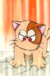 ビッグシールド。透明猫・レスの必殺技。