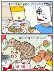 キウイ。下描きの段階では『キウイ(鳥)の輪切り』があった。