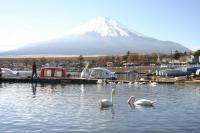2富士山11月13日