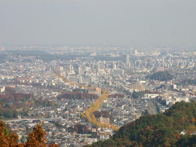 IMG_0373高尾山1