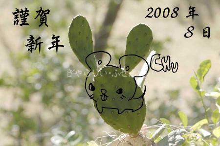 2008年賀状