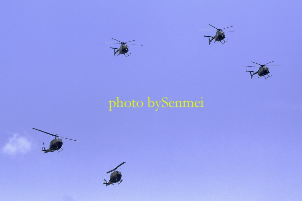 OH-6 in formation