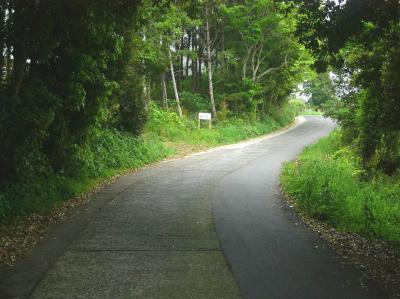Pinakamichi.jpg