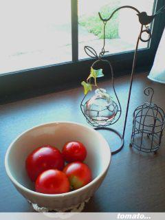 tomato2_320.jpg