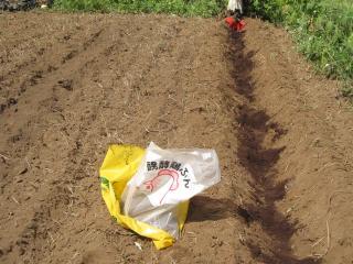 鶏糞と堆肥