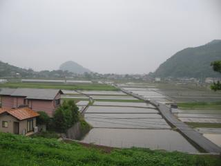 田結の入梅風景