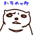 ハラヘリ熊