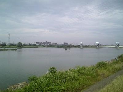 060617稲田堤付近