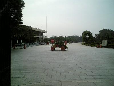 060620朝の馬事公苑