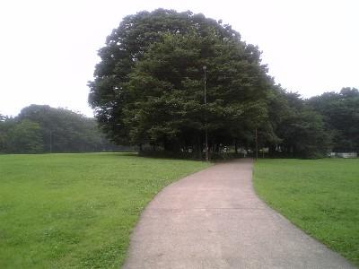 060722砧公園
