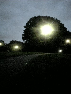 060813砧公園
