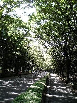 060819駒沢公園3