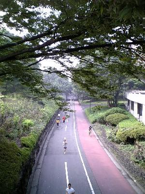 060902駒澤公園1