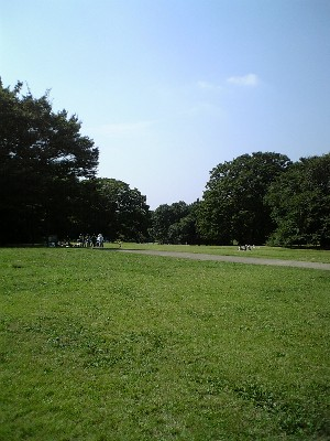 060921砧公園