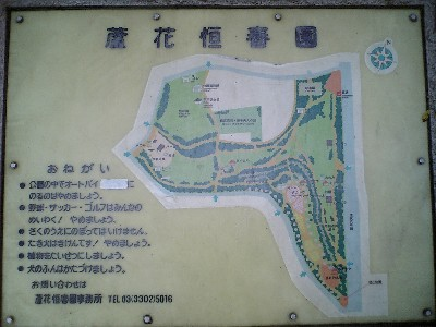 061229芦花公園1