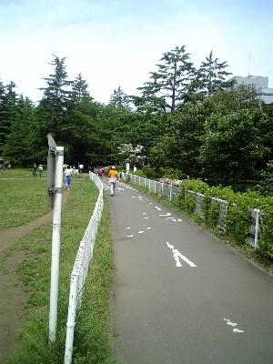 砧サイクリングコーススタート