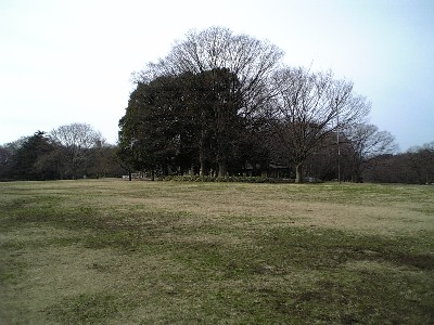 070102砧公園1
