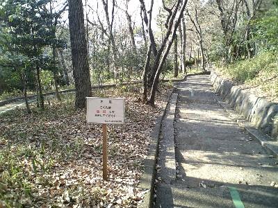 070104大蔵運動公園3