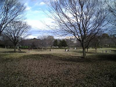 070107祖師谷公園3