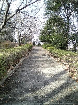 070107祖師谷公園4