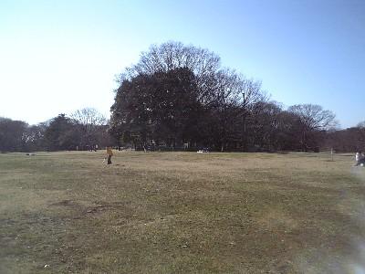 070114砧公園