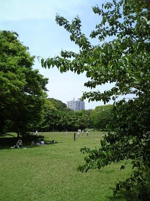 070505砧公園