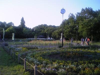 070602芦花公園