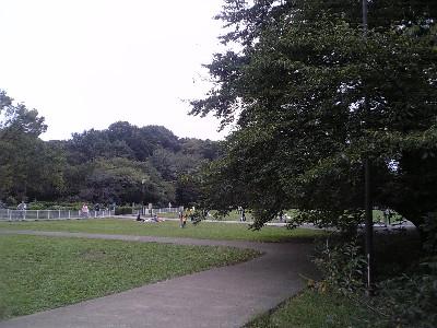 071014砧公園