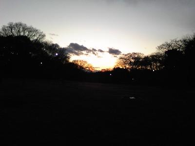080101砧公園