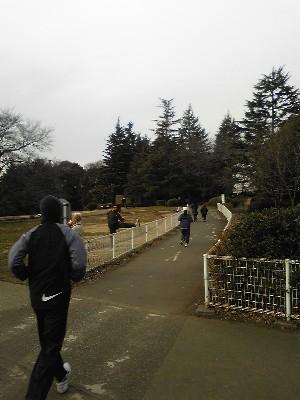 080120砧公園