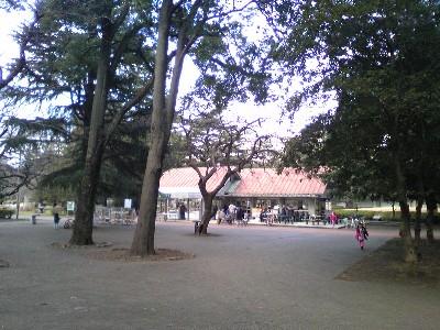 080126砧公園