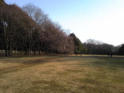 080301砧公園