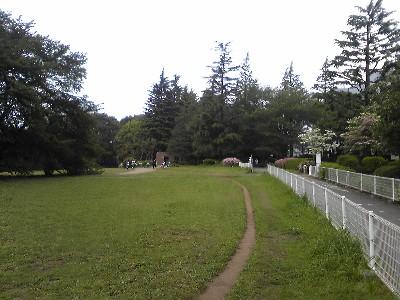 080501砧公園