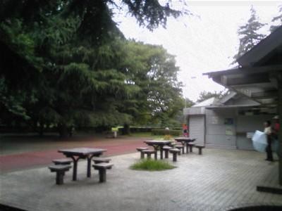 080727砧公園