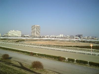 多摩川競走馬練習場