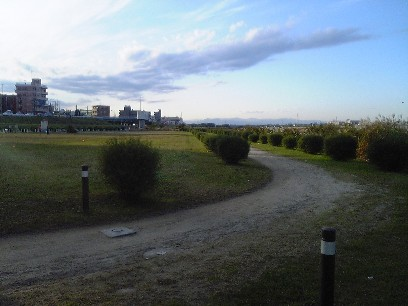 多摩川ハーフ前日2