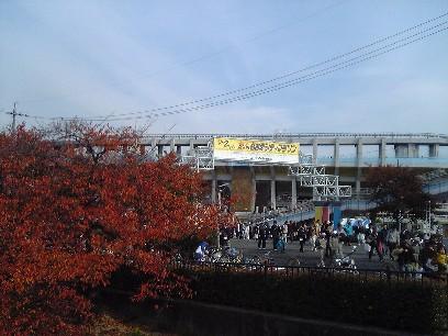 名古屋シティハーフ4