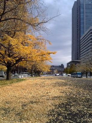 1203東京駅