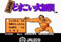 ファミコン 寺尾のどすこい大相撲 日本一周編