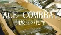 ACE COMBBAT 開放への昆布...エースコンバット