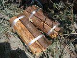 torii2007_0909_121207AA_160.jpg