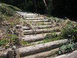 torii2007_0909_121641AA_160.jpg