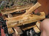 torii2007_0909_122244AA_160.jpg