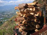 torii2007_0909_122522AA_160.jpg