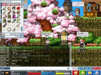 Maple0035.jpg